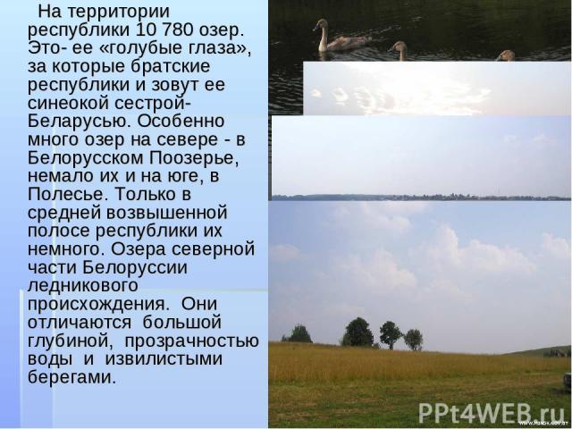 На территории республики 10780 озер. Это- ее «голубые глаза», за которые братские республики и зовут ее синеокой сестрой-Беларусью. Особенно много озер на севере - в Белорусском Поозерье, немало их и на юге, в Полесье. Только в средней возвышенной …