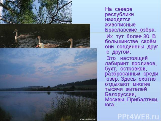 На севере республики находятся живописные Браславские озёра. Их тут более 30. В большинстве своём они соединены друг с другом. Это настоящий лабиринт проливов, бухт, островков, разбросанных среди озёр. Здесь охотно отдыхают многие тысячи жителей Бел…