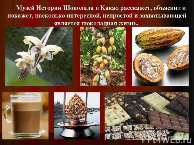 Музей Истории Шоколада и Какао расскажет, объяснит и покажет, насколько интересной, непростой и захватывающей является шоколадная жизнь. *