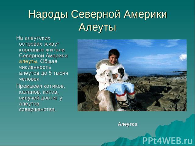 Народы Северной Америки Алеуты На алеутских островах живут коренные жители Северной Америки алеуты. Общая численность алеутов до 5 тысяч человек. Промысел котиков, каланов, китов, сивучей достиг у алеутов совершенства. Алеутка