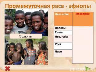 Эфиопы Цвет кожи Более светлая с красноватым оттенком Волосы Темный Глаза Темный