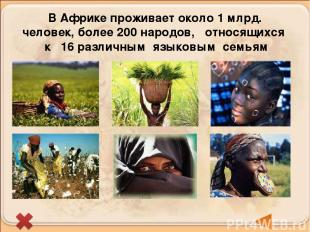 В Африке проживает около 1 млрд. человек, более 200 народов, относящихся к 16 ра