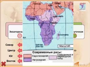 Берберы и арабы (туареги, алжирцы, египтяне) Бушмены и готтентоты Эфиопы, малага