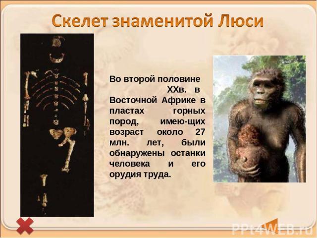 Во второй половине ХХв. в Восточной Африке в пластах горных пород, имею-щих возраст около 27 млн. лет, были обнаружены останки человека и его орудия труда.