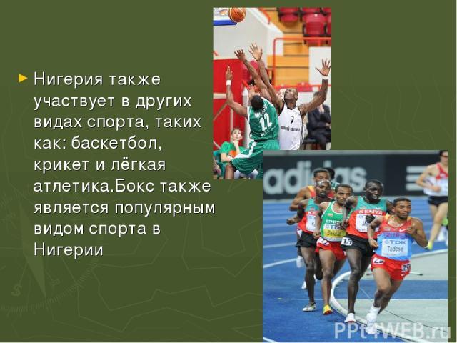 Нигерия также участвует в других видах спорта, таких как:баскетбол, крикетилёгкая атлетика.Бокстакже является популярным видом спорта в Нигерии