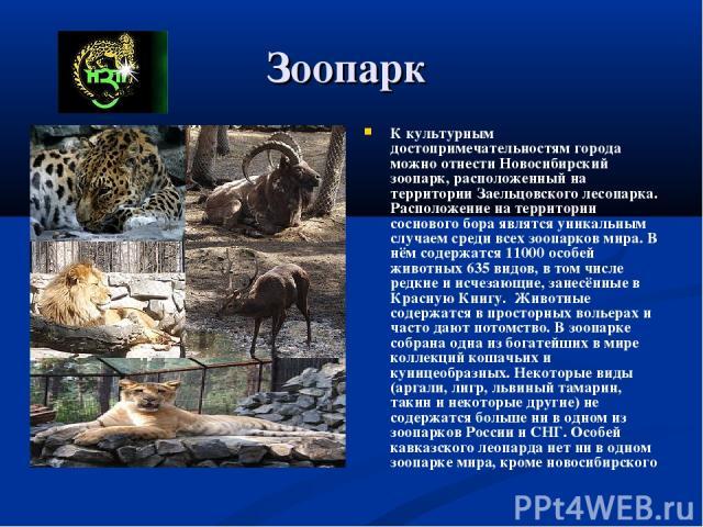 Зоопарк К культурным достопримечательностям города можно отнести Новосибирский зоопарк, расположенный на территории Заельцовского лесопарка. Расположение на территории соснового бора являтся уникальным случаем среди всех зоопарков мира. В нём содерж…