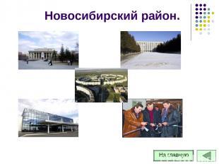 Новосибирский район.