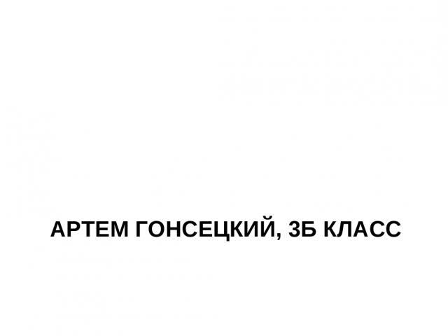 АРТЕМ ГОНСЕЦКИЙ, 3Б КЛАСС