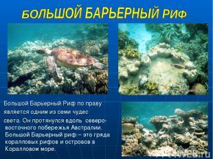 Большой Барьерный Риф по праву является одним из семи чудес света. Он протянулся