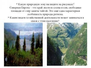 * Какую природную зону вы видите на рисунках? Северная Европа – это край лесов