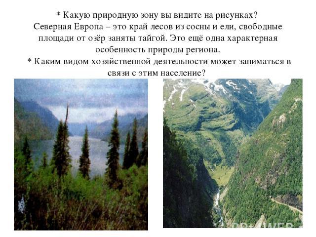 * Какую природную зону вы видите на рисунках? Северная Европа – это край лесов из сосны и ели,свободные площади от озёр заняты тайгой. Это ещё одна характерная особенность природы региона. * Каким видом хозяйственной деятельности может заниматься …