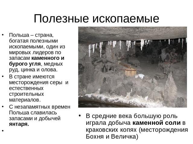Полезные ископаемые Польша – страна, богатая полезными ископаемыми, один из мировых лидеров по запасам каменного и бурого угля, медных руд, цинка и олова. В стране имеются месторождения серы и естественных строительных материалов. С незапамятных вре…