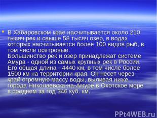 В Хабаровском крае насчитывается около 210 тысяч рек и свыше 58 тысяч озер, в во