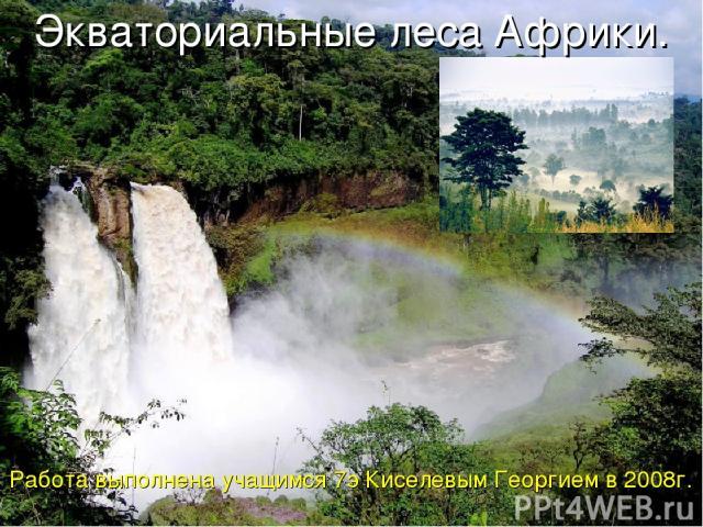 Экваториальные леса Африки. Работа выполнена учащимся 7э Киселевым Георгием в 2008г.