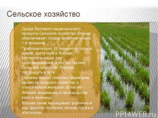 Сельское хозяйство Среди Валового национального продукта Сельское хозяйство Япон