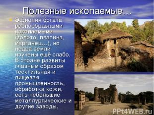 Полезные ископаемые… Эфиопия богата разнообразными ископаемыми (золото, платина,