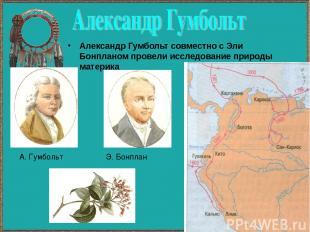 Александр Гумбольт совместно с Эли Бонпланом провели исследование природы матери
