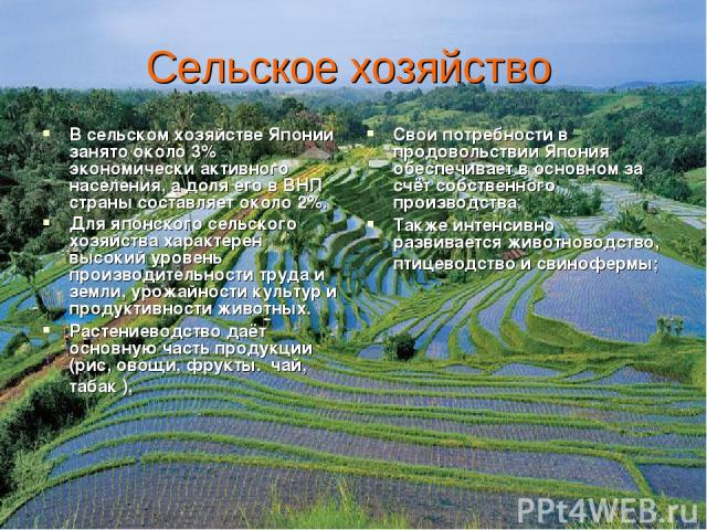 Сельское хозяйство В сельском хозяйстве Японии занято около 3% экономически активного населения, а доля его в ВНП страны составляет около 2%. Для японского сельского хозяйства характерен высокий уровень производительности труда и земли, урожайности …