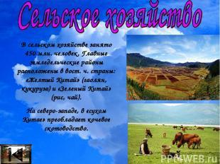 В сельском хозяйстве занято 450 млн. человек. Главные земледельческие районы рас