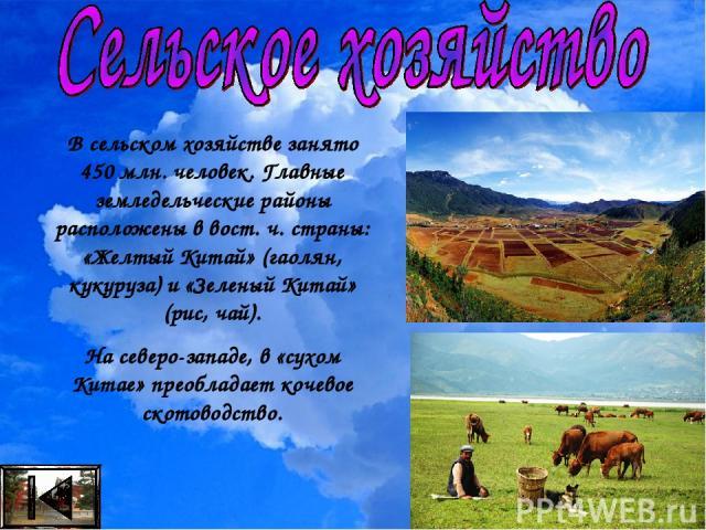 В сельском хозяйстве занято 450 млн. человек. Главные земледельческие районы расположены в вост. ч. страны: «Желтый Китай» (гаолян, кукуруза) и «Зеленый Китай» (рис, чай). На северо-западе, в «сухом Китае» преобладает кочевое скотоводство.