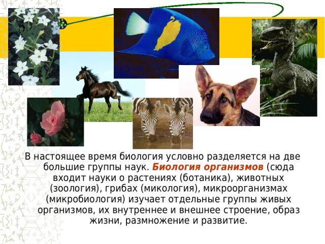 В настоящее время биология условно разделяется на две большие группы наук. Биология организмов (сюда входит науки о растениях (ботаника), животных (зоология), грибах (микология), микроорганизмах (микробиология) изучает отдельные группы живых организ…