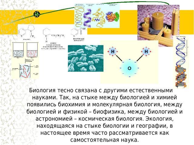 Биология тесно связана с другими естественными науками. Так, на стыке между биологией и химией появились биохимия и молекулярная биология, между биологией и физикой – биофизика, между биологией и астрономией – космическая биология. Экология, находящ…