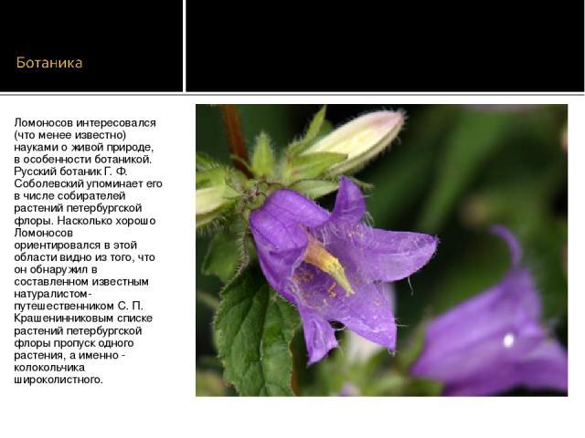 Ломоносов интересовался (что менее известно) науками о живой природе, в особенности ботаникой. Русский ботаник Г. Ф. Соболевский упоминает его в числе собирателей растений петербургской флоры. Насколько хорошо Ломоносов ориентировался в этой области…