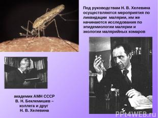 Под руководствам Н. В. Хелевина осуществляются мероприятия по ликвидации малярии