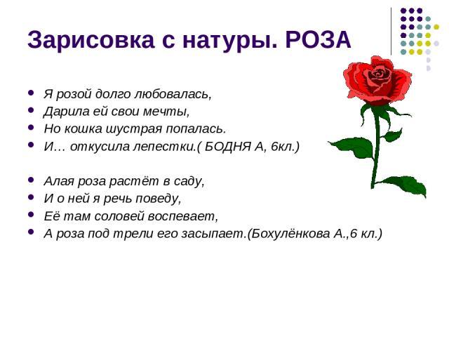 Зарисовка с натуры. РОЗА Я розой долго любовалась, Дарила ей свои мечты, Но кошка шустрая попалась. И… откусила лепестки.( БОДНЯ А, 6кл.) Алая роза растёт в саду, И о ней я речь поведу, Её там соловей воспевает, А роза под трели его засыпает.(Бохулё…