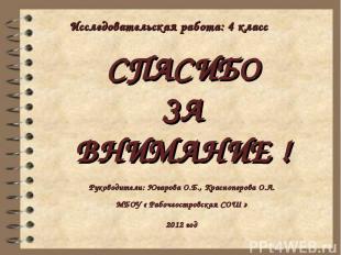 СПАСИБО ЗА ВНИМАНИЕ ! Руководители: Югарова О.Б., Красноперова О.Л. МБОУ « Рабоч