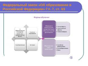 Федеральный закон «Об образовании в Российской Федерации» Гл. 7, ст. 63