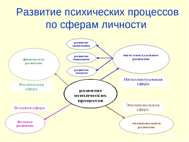 Развитие психических процессов по сферам личности