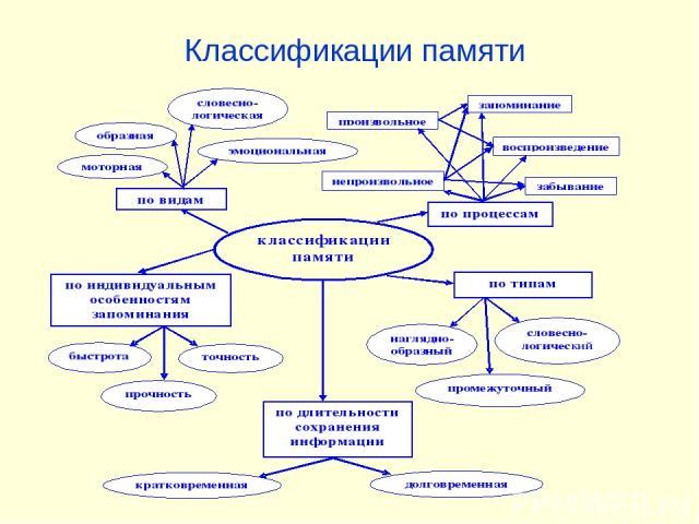 Классификации памяти