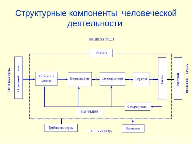 Структурные компоненты человеческой деятельности