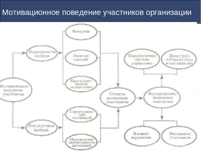 Мотивационное поведение участников организации