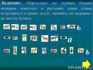 Задание: Определите по первым буквам названия животных и растений, какие птицы в