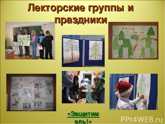 Лекторские группы и праздники «Защитим ель!»