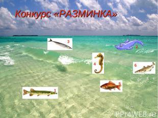 Конкурс «РАЗМИНКА» 1 2 3 4 5 6