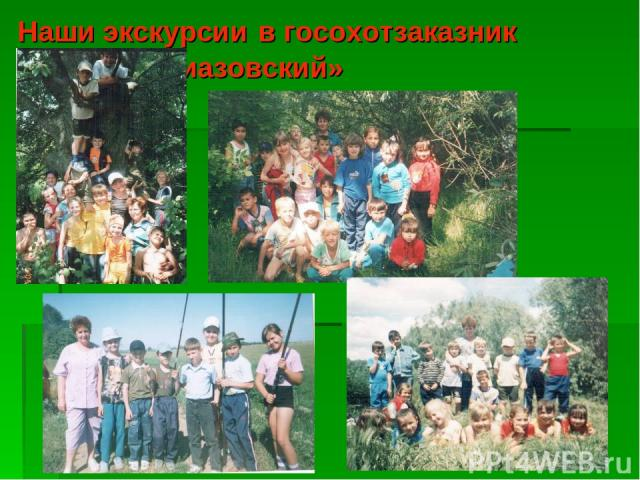 Наши экскурсии в госохотзаказник «Приазовский»