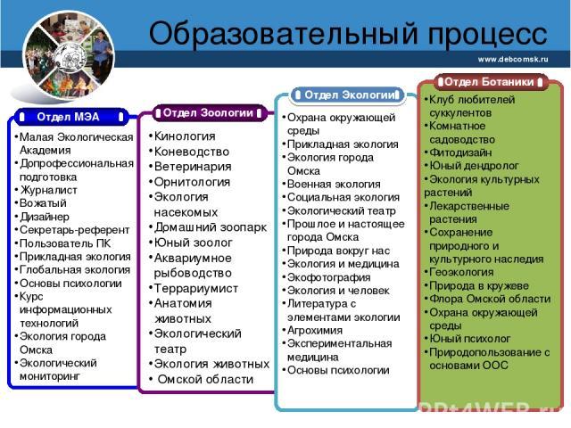 Образовательный процесс www.debcomsk.ru