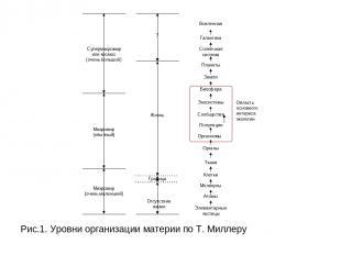 Рис.1. Уровни организации материи по Т. Миллеру