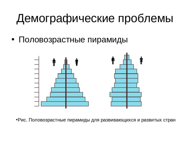 Демографические проблемы Половозрастные пирамиды Рис. Половозрастные пирамиды для развивающихся и развитых стран