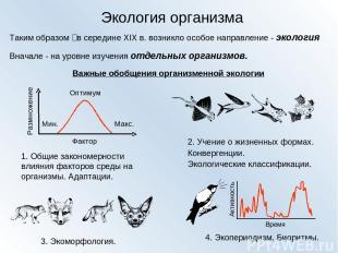 Экология организма Таким образом‑ в середине XIX в. возникло особое направление