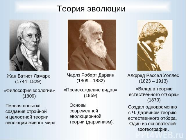 Теория эволюции Чарлз Роберт Дарвин (1809—1882) Жан Батист Ламарк (1744–1829) Первая попытка создания стройной и целостной теории эволюции живого мира. Основы современной эволюционной теории (дарвинизм). Алфред Рассел Уоллес (1823 – 1913) Создал одн…
