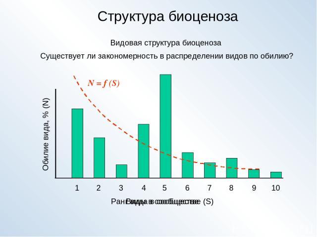 Структура биоценоза Видовая структура биоценоза 1 2 3 4 5 6 7 8 9 10 Виды в сообществе Обилие вида, % (N) Ранг вида в сообществе (S) N = f (S) Существует ли закономерность в распределении видов по обилию?