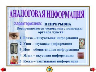 НЕПРЕРЫВНА Воспринимается человеком с помощью органов чувств: Глаза – визуальная