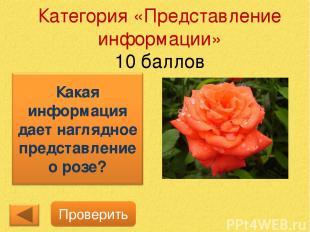 Категория «Представление информации» 10 баллов Проверить