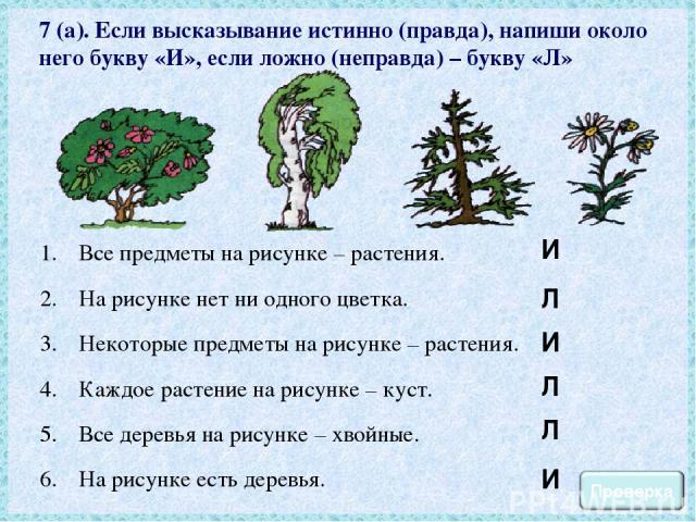 7 (а). Если высказывание истинно (правда), напиши около него букву «И», если ложно (неправда) – букву «Л» Все предметы на рисунке – растения. На рисунке нет ни одного цветка. Некоторые предметы на рисунке – растения. Каждое растение на рисунке – кус…