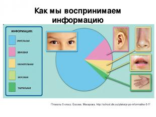 Как мы воспринимаем информацию Плакаты 5 класс, Босова, Макарова, http://school.