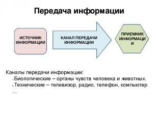 Передача информации Каналы передачи информации: Биологические – органы чувств че